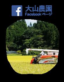 大山農園facebookページ